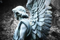 Esperanza de un ángel | Hope of an angel