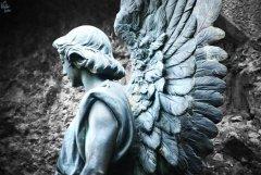 Esperanza de un ángel   Hope of an angel