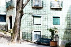 Rincón de paz | Corner of peace