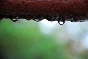 Gotas o lágrimas | Waterdrops or tears