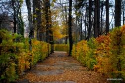 Camino Schmid y La Granja 15