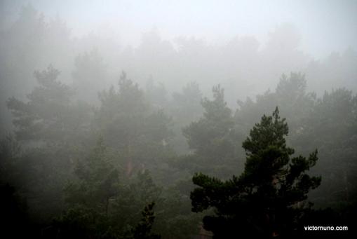 autumn-2011-00