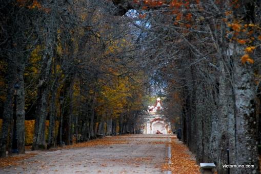 autumn-2011-08