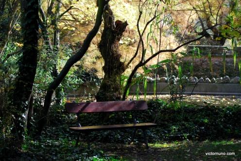 autumn-2011-20